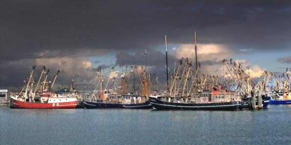 Donkere luchten boven de vissersvloot in Lauwersoog